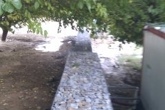 IMAG0153